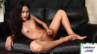 Horny asian ladyboy masturbates hard